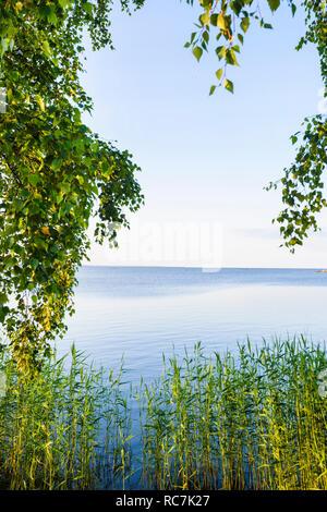 Vista panoramica del mare con alberi e piante in primo piano Immagini Stock