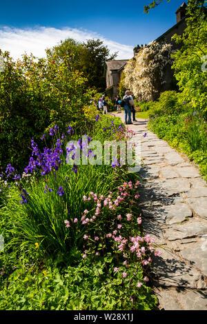 Regno Unito, Cumbria, Hawkshead, Near Sawrey, Hill Top Farm, Beatrix Potter home, fiori che crescono nel giardino Immagini Stock