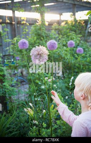Ragazza giovane toccando i fiori Immagini Stock