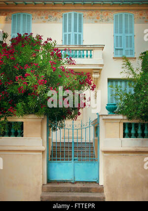 Casa vista frontale con fiori Immagini Stock