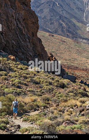 Escursionista su un sentiero intorno Roques del Garcia formazione di roccia, ai piedi del vulcano Teide (3718 m). Immagini Stock