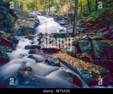 Electric Brook Falls, Schooleys Mountain Park, Morris County, Nuova Jerssey Immagini Stock
