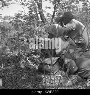 Stati Uniti Marine sniper e spotter lavorare insieme nella raccolta fuori il nemico in Corea. Guerra di Corea, 1950 Immagini Stock