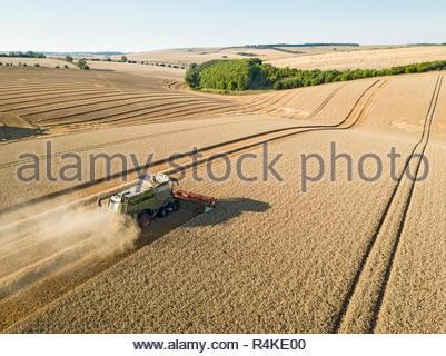 Antenna di raccolto paesaggio della mietitrebbia e estate campo di grano raccolto farm Immagini Stock