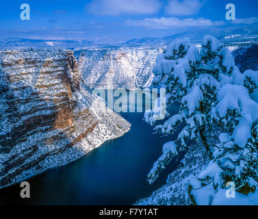 Neve a Red Canyon, Flaming Gorge National Recreation Area, Utah, Green River, Ashley National Forest Immagini Stock