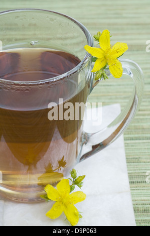 Tè di Hypericum Immagini Stock