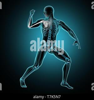 3D render di un maschio di figura medica con il braccio sollevato e il braccio ossa evidenziata Immagini Stock