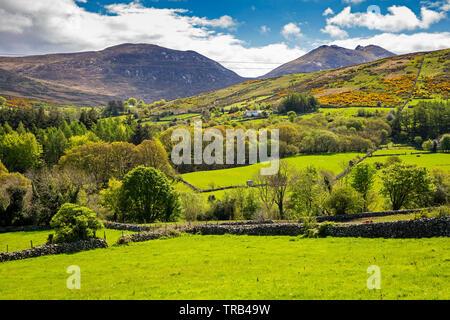 Irlanda del Nord, Co Down, Clanachullion Bridge, Slievenlaglogh e Slieve Bearnach da Shimna River Valley Immagini Stock