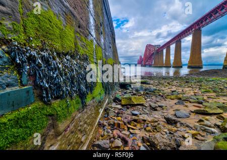 Regno Unito, Scozia, Edimburgo, Firth of Forth, Via Ponte Ferroviario Immagini Stock
