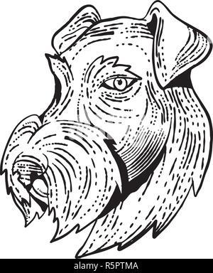 Lo stile di attacco illustrazione della testa di Airedale Terrier, Bingley Terrier o Waterside Terrier un cane di razza del terrier tipo visto dal lato fatto su Immagini Stock