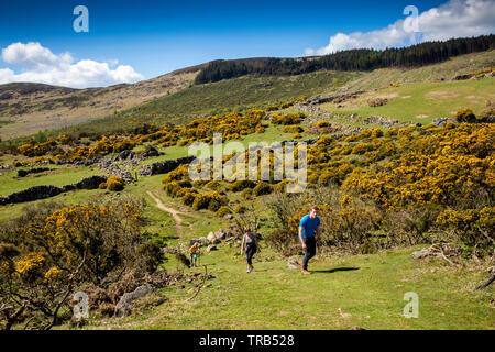 Irlanda, Co Louth, penisola di Cooley, Rooskey, i visitatori possono salire a piedi a forte pendenza in abbandonato pre-carestia hilltop village sopra Carlingford Lough Immagini Stock