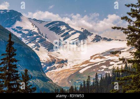 Il Parco Nazionale di Glacier, Montana. Jackson Glacier Immagini Stock