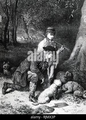 Caccia al tartufo, utilizzo di cani di odore fuori di tartufi. In stagione, tartufi in inglese da legno di faggio, particolarmente quelle in Sussex, Hampshire, Wiltshire, Dorset e Kent. 1869. Immagini Stock