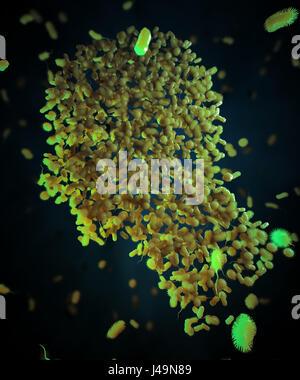 I batteri formanti un corpo umano - microbiome e probiotici concetto 3D'illustrazione. Immagini Stock