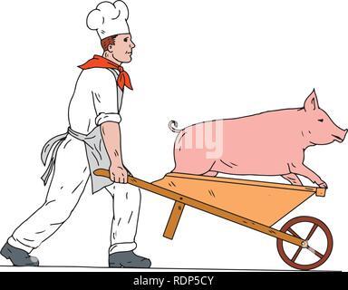 Schizzo di disegno illustrazione dello stile di uno chef, Cook, baker o macellaio carriola spinta portando un maiale visto dal lato isolato su sfondo bianco mi Immagini Stock