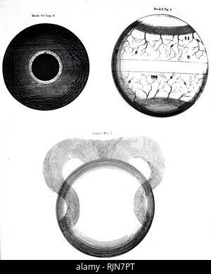 Una incisione raffigurante Thomas Burnett's idee delle diverse fasi di formazione della Terra. Thomas Burnett (1635-1715) un inglese un teologo e scrittore sul cosmogonia. Datata del XIX secolo Immagini Stock