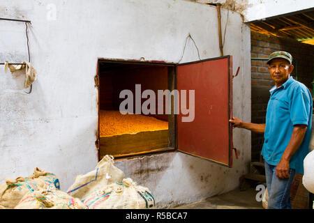 La Colombia, Caldas, Manizales, Chinchina, Hacienda de Guayabal, un lavoratore che mostra il forno dove il caffè viene essiccato Immagini Stock