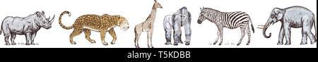Animali africani. Rinoceronte elefante giraffa ippopotamo Leopard Iena Western gorilla Wild zebra. Incisi disegnati a mano Vintage vecchia stampante monocromatica safari Immagini Stock