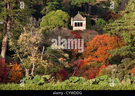 I colori autunnali nel parco del Monte Stewart, Irlanda del Nord. Immagini Stock