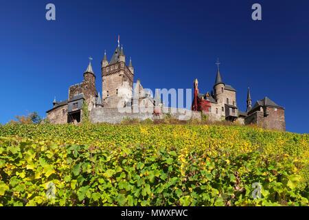 Castello di Reichsburg e vigneti in autunno, Cochem, Valle della Mosella, Renania-Palatinato, Germania, Europa Immagini Stock