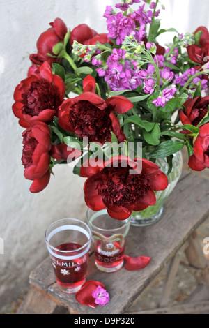 Mazzo di fiori rossi und bicchieri Immagini Stock