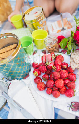 Le fragole e i cookie sul Coperta picnic Immagini Stock