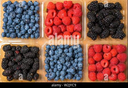Frutti di Bosco assortiti su uno sfondo di legno Immagini Stock