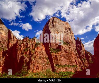 Il grande trono bianco del Parco Nazionale Zion, Utah fiume vergine, enorme butte di arenaria Navajo, Canyon Zion Immagini Stock