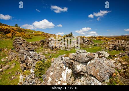 Irlanda, Co Louth, penisola di Cooley, Rooskey, rovine del muro di casa in abbandonato pre-carestia village Immagini Stock