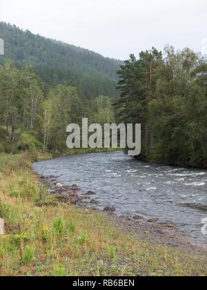Onde, spray e schiuma, fiume Katun nelle montagne di Altai. La Siberia, Russia Immagini Stock