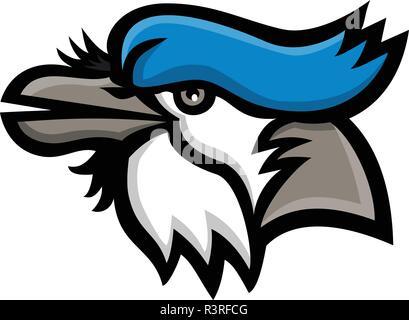 Icona di mascotte illustrazione della testa di un blue jay (Cyanocitta cristata), un uccello passerine nella famiglia Corvidae, originaria del Nord America cercando la vista Immagini Stock