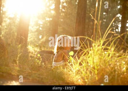 Ragazza seduta nella foresta con caldo sole Immagini Stock