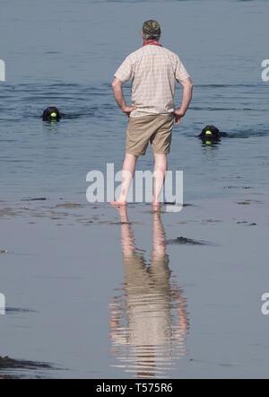 Portland, Dorset, Regno Unito. 21 apr 2019. Regno Unito Meteo, un dog walker gode il meteo a Portland Harbour, Dorset, UK Credit: Finnbarr Webster/Alamy Live News Immagini Stock