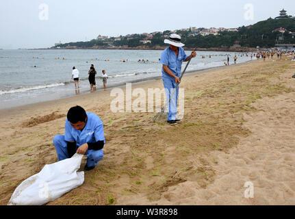 Qingdao, Cina Shandong. 17 Luglio, 2019. Lavoratori alghe chiaro lungo la spiaggia di Qingdao, Cina orientale della provincia di Shandong, 17 luglio 2019. Credito: Li Ziheng/Xinhua/Alamy Live News Immagini Stock