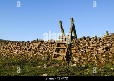 Una scaletta montanti attraversando un secco muro di pietra nel Derbyshire,UK. Immagini Stock