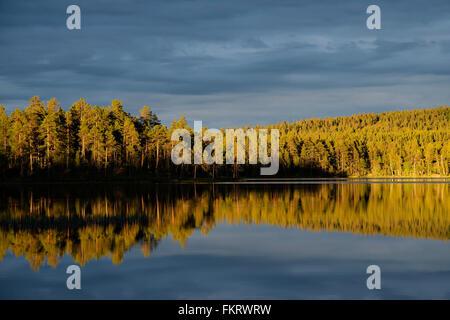 Il sole di mezzanotte in Lapponia, Finlandia. Immagini Stock