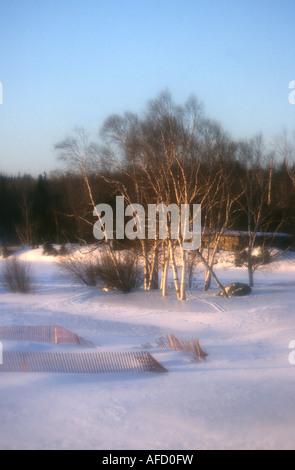 Luce Romantica su una scena di neve in Quebec, Canada Immagini Stock