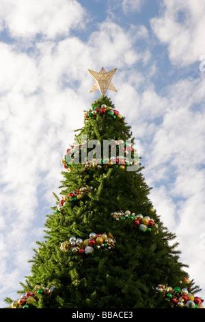 Un grande albero di Natale decorato, all'aperto Immagini Stock