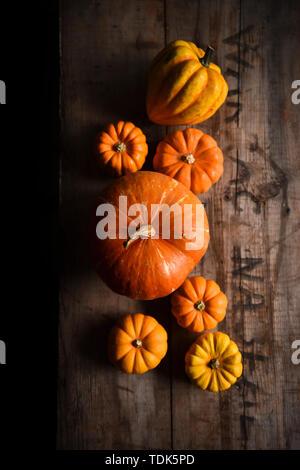 Zucche arancione su una gabbia in legno Immagini Stock