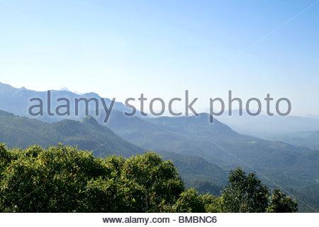 Valle IN PONMUDI, Kerala Immagini Stock