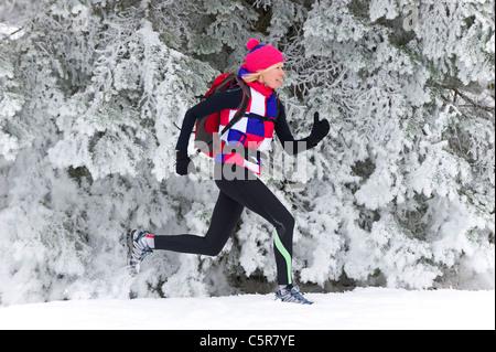 Un pareggiatore che corre lungo un innevato della foresta di pini. Immagini Stock
