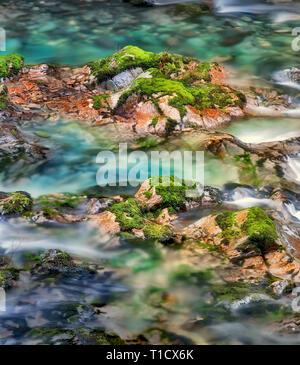 Poco a nord del fiume Santiam con rocce colorate e piscine. Opal Creek Scenic Area ricreativa, Oregon Immagini Stock