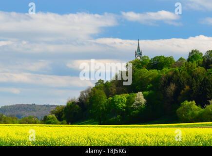 Torre dell'orologio sulla riforma Chiesa, Rein, Argovia, Svizzera Immagini Stock