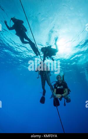 I subacquei ascendente e in attesa di ascesa verso la superficie durante il fermo di sicurezza. Immagini Stock