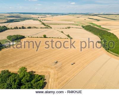 Antenna di raccolto paesaggio di mietitrebbia estate taglio campo di grano raccolto e del rimorchio del trattore in agriturismo Immagini Stock