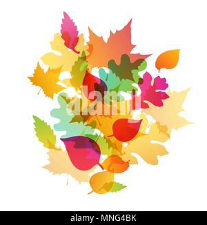 Abstract luminoso autunno sfondo con la caduta di boschi di querce e di foglie di acero Immagini Stock
