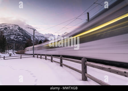 Bernina Express nel paesaggio innevato, Morteratsch Engadin del Cantone dei Grigioni, Svizzera, Europa Immagini Stock