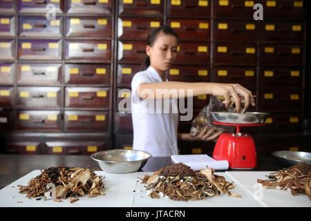 La medicina di erbe terapia, medicina tradizionale cinese farmacia, Ho Chi Minh City, Vietnam, Indocina, Asia sud-orientale, Asia Immagini Stock