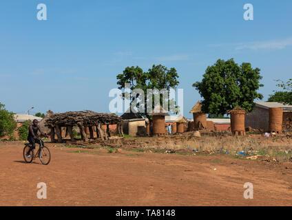 I granai con tetti di paglia in un villaggio Senufo, Savanes distretto, Niofoin, Costa d'Avorio Immagini Stock