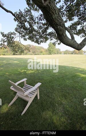 Sedia in un prato con ramo di albero Immagini Stock